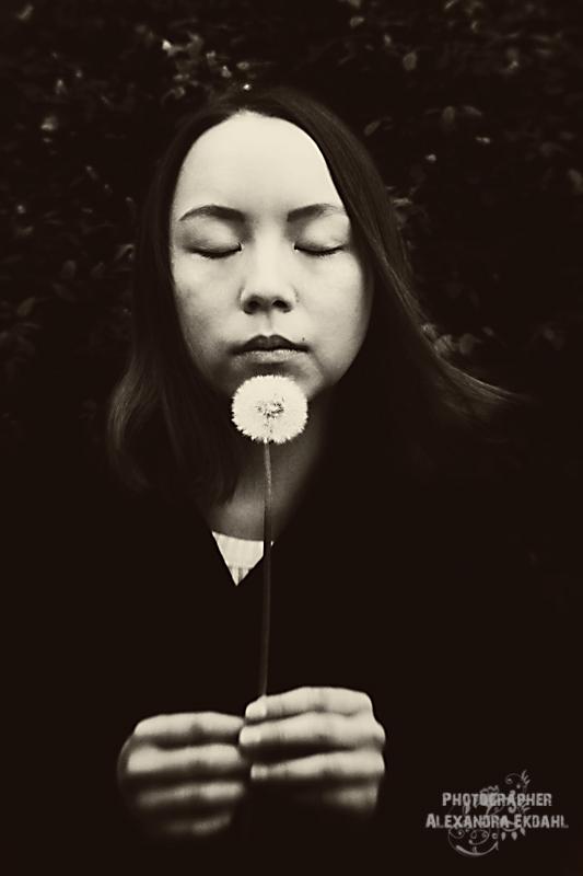 Photographer Alexandra Ekdahl 2